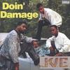 Couverture de l'album Doin' Damage