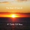 Couverture de l'album A Taste of Ibiza: The Best of Gary B