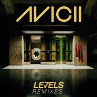 Couverture du titre Levels (remixes)