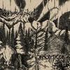 Cover of the album Panopticon & Waldgeflüster (Split)