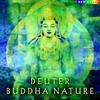 Couverture de l'album Buddha Nature