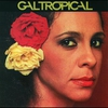 Couverture de l'album Gal tropical