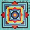 Couverture de l'album Perfect Harmony
