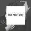 Couverture de l'album The Next Day