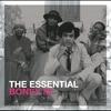 Couverture de l'album The Essential Boney M.