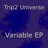Cover of the album Variable - EP