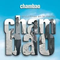 Cover of the track Endorfinas en la mente