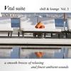 Couverture de l'album Vital Suite: Chill & Lounge, Vol. 3