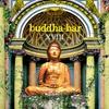 Couverture de l'album Buddha-Bar XVIII