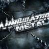 Couverture de l'album Metal