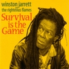 Couverture de l'album Survival Is the Game