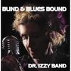 Couverture de l'album Blind and Blues Bound