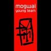 Couverture de l'album Young Team