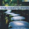Couverture de l'album The Healing Path