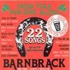 Couverture de l'album 22 Irish Folk Pub Songs