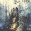 Couverture de l'album Wistful
