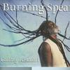Couverture de l'album Calling Rastafari