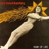 Cover of the album Hum of Life