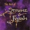 Couverture de l'album The Best of Strunz & Farah (Collection)