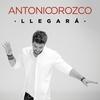 Cover of the album Llegará - Single