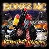 Couverture de l'album Krampfhaft kriminell