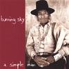 Couverture de l'album A Simple Man