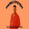 Couverture de l'album Les Top de Ninja, Vol. 2