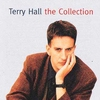 Cover of the album Terry Hall - The Collection