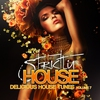 Couverture de l'album Strictly House - Delicious House Tunes, Vol. 7