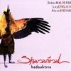 Cover of the album Shamanimal