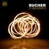 Cover of the album Firedance - Single