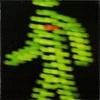 Cover of the album Toleranca