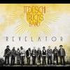 Cover of the album Revelator