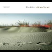 Couverture du titre Hidden Shore