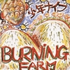 Couverture de l'album Burning Farm