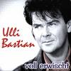 Couverture de l'album Voll Erwischt