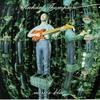 Couverture de l'album Mirror Blue