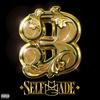 Couverture de l'album Self Made, Vol. 3