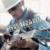 Couverture de l'album The Best of Taj Mahal