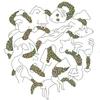Couverture de l'album Oblangle Fizz Y'all