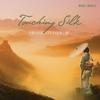 Couverture de l'album Touching Silk