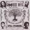 Couverture de l'album Still Standing