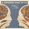 Cover of the album A Different Kind of Fix