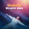 Cover of the album Black Sea - Single