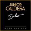 Couverture de l'album Debut (Gold Edition)