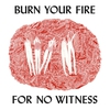 Couverture de l'album Burn Your Fire for No Witness
