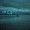 Cover of the album Vale of Forgotten Sounds
