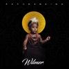 Couverture de l'album Wilmer