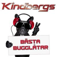 Cover of the track Bästa bugglåtar