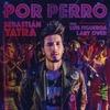 Cover of the track Por Perro